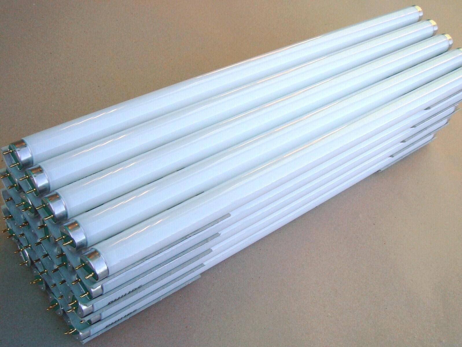 Luminofoortoru 15 W, Philips TL-D 15W/840, T8, 702807